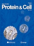 proteincell