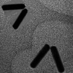 nano letters 1